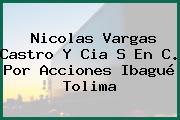 Nicolas Vargas Castro Y Cia S En C. Por Acciones Ibagué Tolima