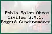 Pablo Salas Obras Civiles S.A.S. Bogotá Cundinamarca
