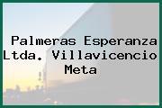 Palmeras Esperanza Ltda. Villavicencio Meta