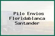 Pilo Envios Floridablanca Santander