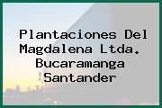 Plantaciones Del Magdalena Ltda. Bucaramanga Santander