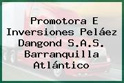 Promotora E Inversiones Peláez Dangond S.A.S. Barranquilla Atlántico