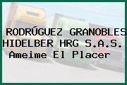 RODRÚGUEZ GRANOBLES HIDELBER HRG S.A.S. Ameime El Placer