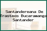 Santandereana De Trasteos Bucaramanga Santander