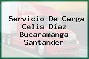 Servicio De Carga Celis Díaz Bucaramanga Santander