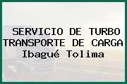 SERVICIO DE TURBO TRANSPORTE DE CARGA Ibagué Tolima