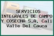 SERVICIOS INTEGRALES DE CAMPO Y COSECHA S.A. Cali Valle Del Cauca