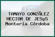 TAMAYO GONZÃLEZ HECTOR DE JESºS Montería Córdoba