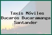 Taxis Móviles Bucaros Bucaramanga Santander