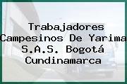 Trabajadores Campesinos De Yarima S.A.S. Bogotá Cundinamarca