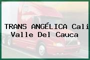 TRANS ANGÉLICA Cali Valle Del Cauca