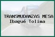 TRANSMUDANZAS MESA Ibagué Tolima