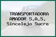 TRANSPORTADORA AMADOR S.A.S. Sincelejo Sucre