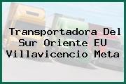 Transportadora Del Sur Oriente EU Villavicencio Meta