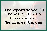 Transportadora El Trebol S.A.S En Liquidación Manizales Caldas