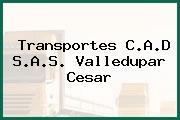Transportes C.A.D S.A.S. Valledupar Cesar