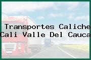 Transportes Caliche Cali Valle Del Cauca