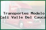 Transportes Modelo Cali Valle Del Cauca
