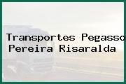 Transportes Pegasso Pereira Risaralda