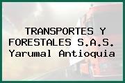 TRANSPORTES Y FORESTALES S.A.S. Yarumal Antioquia