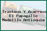 Trasteos Y Acarreos El Papagallo Medellín Antioquia