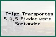 Trigo Transportes S.A.S Piedecuesta Santander
