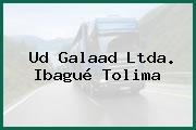 Ud Galaad Ltda. Ibagué Tolima