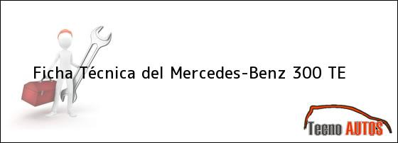 Ficha Técnica del <i>Mercedes-Benz 300 TE</i>