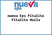 <i>nueva Eps Pitalito Pitalito Huila</i>