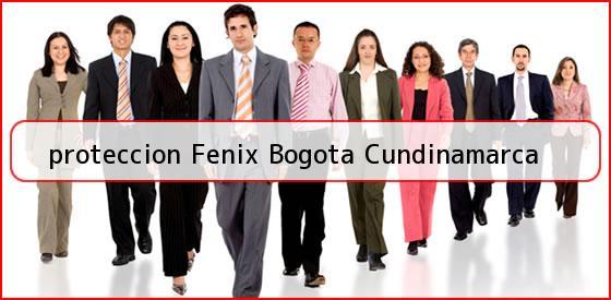 <b>proteccion Fenix Bogota Cundinamarca</b>
