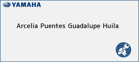 Teléfono, Dirección y otros datos de contacto para Arcelia Puentes, Guadalupe, Huila, Colombia