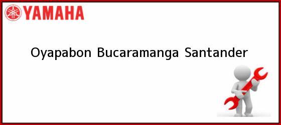 Teléfono, Dirección y otros datos de contacto para  Oyapabon, Bucaramanga, Santander, Colombia