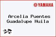 Arcelia Puentes Guadalupe Huila