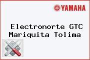 Electronorte GTC Mariquita Tolima