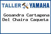 Gosandra Cartagena Del Chaira Caqueta