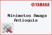 Ninimotos Amagá Antioquia