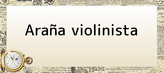 Araña violinista