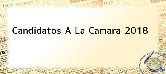 Candidatos A La Camara 2018