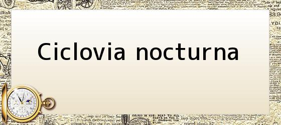 Ciclovia nocturna