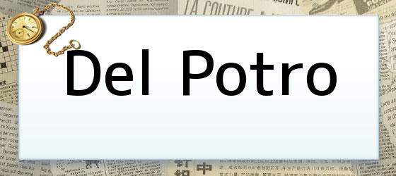 Del Potro
