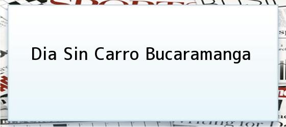 Dia Sin Carro Bucaramanga