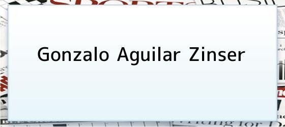 Gonzalo Aguilar Zinser