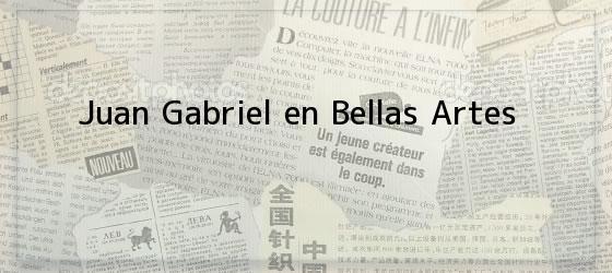 Juan Gabriel en Bellas Artes
