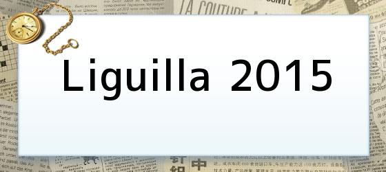 Liguilla 2015