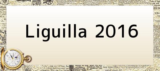 Liguilla 2016