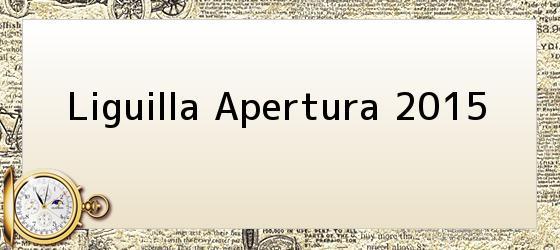 Liguilla Apertura 2015