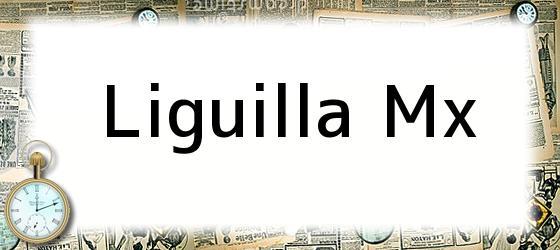 Liguilla Mx