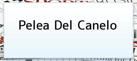 Pelea Del Canelo