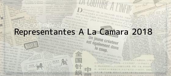 Representantes A La Camara 2018