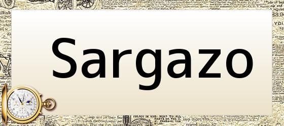 Sargazo